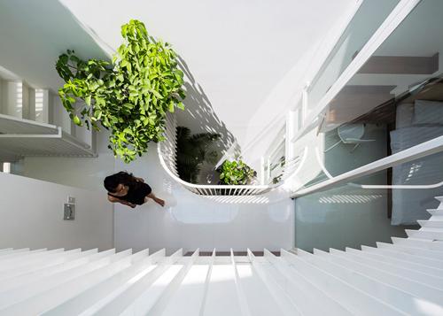 Ngắm ngôi nhà ống 42 m2 với cây xanh khắp nhà thanh lịch