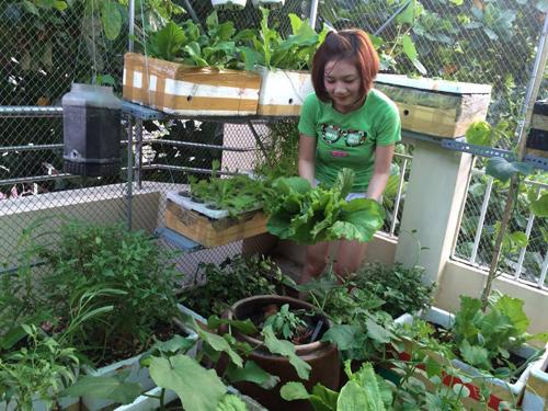 9X xinh xắn thức đêm trồng rau, nuôi gà nhưng vẫn vui vẻ