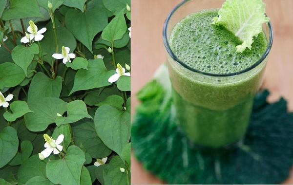Cách giảm mỡ bụng bằng rau củ trong 1 tuần nhanh nhất