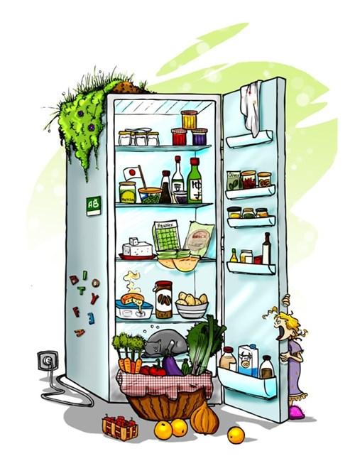 Chỉ cần giữ vệ sinh tủ lạnh thì không phải lo ngộ độc thực phẩm