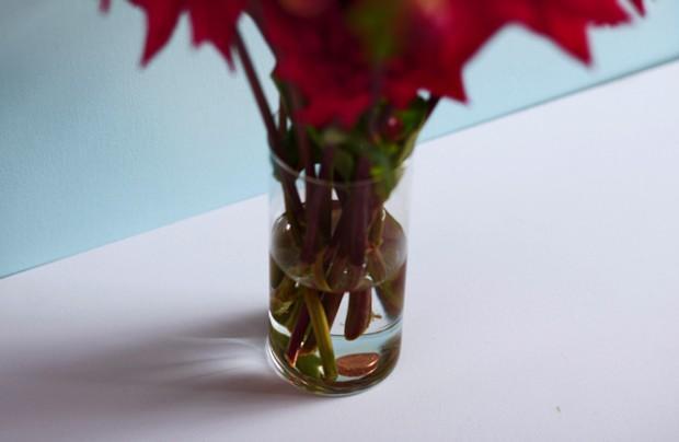 Mẹo siêu hay làm sống lại hoa héo không phải ai cũng biết