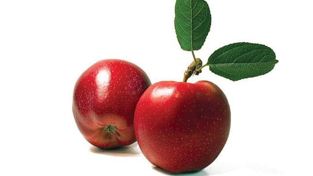 Những loại quả vừa rẻ vừa ngon giúp giảm cân