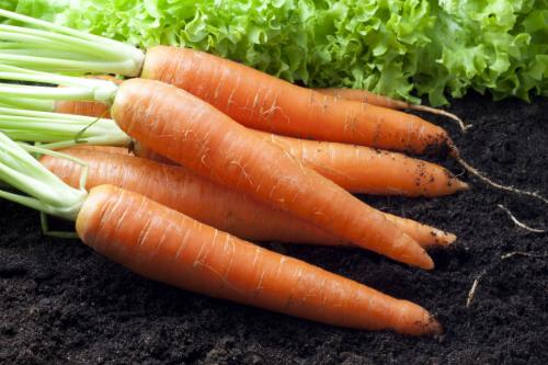 6 loại củ quả ăn vỏ tốt cho sức khỏe