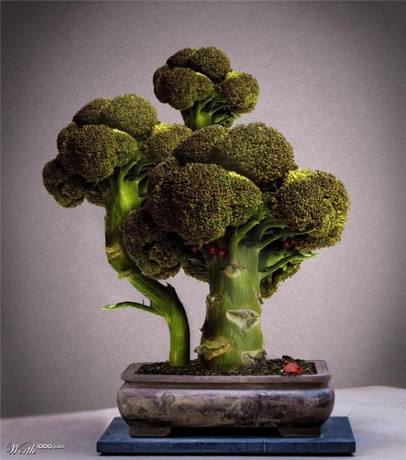 Biến tấu bonsai trồng từ rau, củ, quả 'ngon hết xảy'