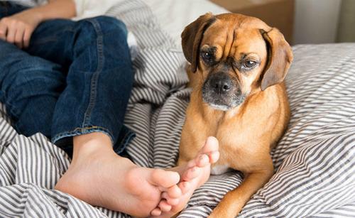 Chân bạn bị hôi tại sao ?