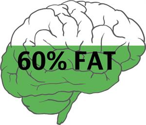 5 cách đơn giản giúp não bộ luôn khoẻ mạnh