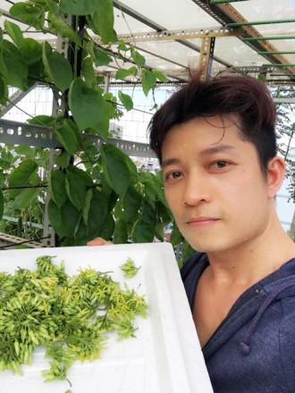 'Sướng mắt' ngắm vườn rau trên mái của nhà thiết kế Thuận Việt