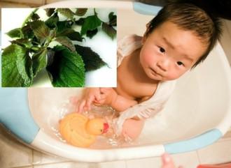 Trẻ bị rôm sảy, tắm lá gây hại