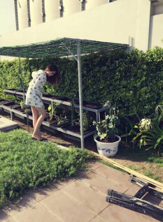 Vườn rau trong nhà penthouse triệu đô của Ngọc Trinh